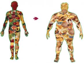 вред лишнего веса для здоровья